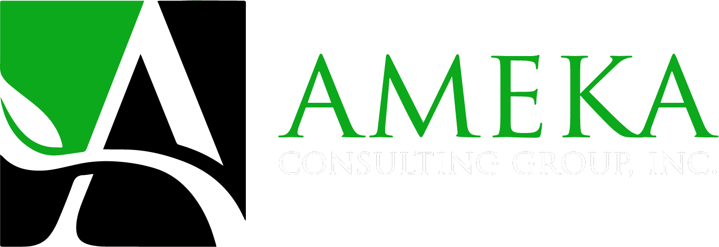 Ameka Consulting Group
